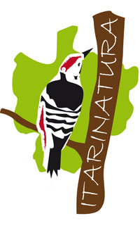 Logo-Itarinatura
