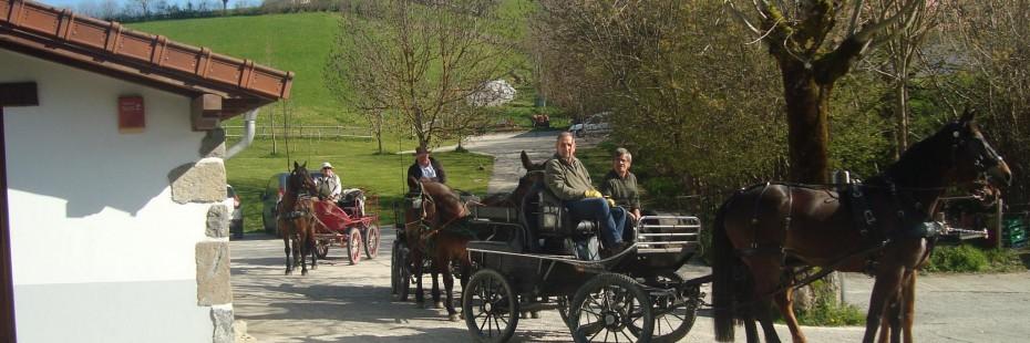 Selva de Irati en caballo desde Mendilatz